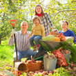 Happy family with harvest — Stock Photo