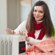 Womnear heater — Stock Photo #32309245