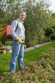 Man spraying plant — Stock Photo