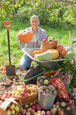 Man with vegetables harvest — Stock Photo