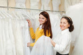 Women chooses bridal clothes — Stock Photo