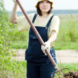 Stock Photo: Womscatters manure in field