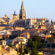 Toledo Cathedral in summer morning — Stock Photo #35139817