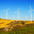 Wind farm at farmland — Stock Photo