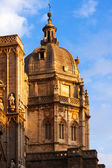 Dome of Toledo Cathedral — Stockfoto