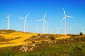 Wind farm at farmland — Stock Photo