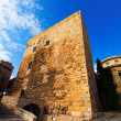 Palace of Pretori Roma. Tarragona — Stock Photo