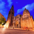 Night view of Toledo Cathedral — Stock Photo