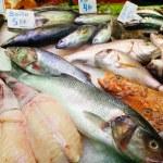Fish on spanish market counter — Stock Photo #35144359