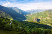 Forest mountains landscape. Pyrenees — Stock Photo