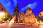 Night view of Toledo Cathedral — Stok fotoğraf