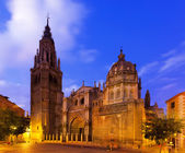 Toledo Cathedral in summer evening — Stock Photo