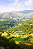 Summer view of valley at Pyrenees — Stock Photo