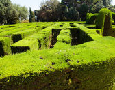Närbild av labyrinten på parc del laberint — Stockfoto