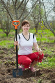 Woman planting tree in orchard — Stock Photo