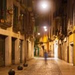 Night street view of Girona — Stock Photo #38413935