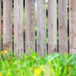 Wooden fence background — Stock Photo
