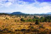 Mountainous terrain — Stock Photo