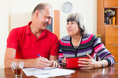Happy mature couple with financial documents — Stock Photo