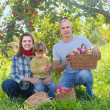 Happy family in the orchard — Stock Photo