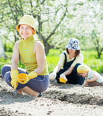 Family sows seeds in soil — Stock Photo