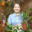 Stock Photo: Womwith ficus plant at flower store
