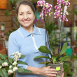 Stock Photo: Womwith Phalaenopsis orchid at flower shop