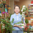 Woman chooses Dendrobium orchid — Stock Photo