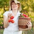Stock Photo: Womwith basket of harvested vegetables