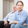 Stock Photo: Senior couple having problems