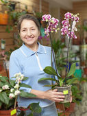 Woman with Phalaenopsis orchid at flower shop — Stock Photo
