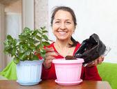 Mujer madura trasplantes de flor — Foto de Stock