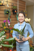 Woman with orchid in flower store — Stock Photo