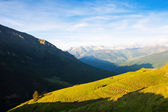 Summer view of highland meadow at Pyrenees — Stock Photo