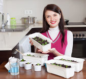 Brunette woman with various sprouts — Stock Photo