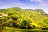 Catalan mountains landscape in summer — Stock Photo