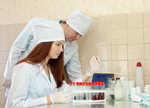 Two clinicians works with blood sample — Stock Photo