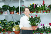 Woman chooses roses at flower store — Stock Photo