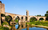 Old european town with medieval bridge over  river — Stock Photo