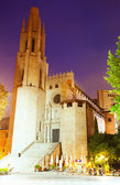 Evening view of   Collegiate Church of Sant Feliu  — Stock Photo