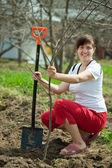 Happy woman planting  tree  — Stock Photo