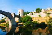 View of Puente of Alcantara in sunny day. — Foto Stock