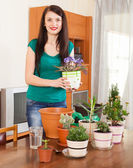 Smiling girl working with  viola flowers in pots   — Stockfoto