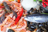 Uncooked marine products — Stockfoto