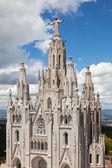 耶稣圣心大教堂 — 图库照片