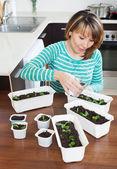 Gardener in green  watering sprouts — Stock Photo