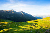 Highland meadow at Pyrenees — Стоковое фото