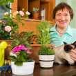 Woman with cat and plants — Stock Photo #48986179