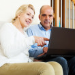 Happy mature couple with laptop — Stock Photo #48987631