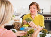 Womans with medicinal herbs — Stock Photo